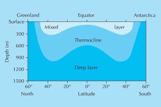 diagram of radiometer ocean stratification     ritu s biology hub  ocean stratification     ritu s biology hub